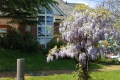 Haus-fewo-Garten